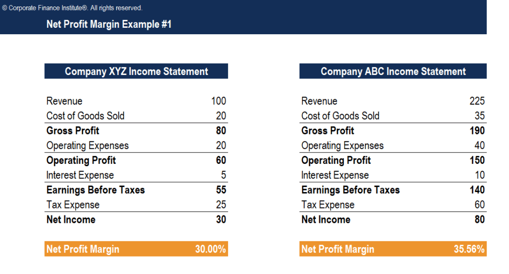 Net Profit Margin Template Screenshot