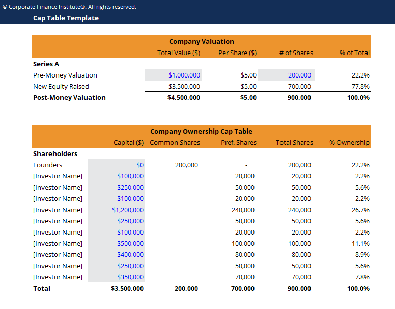 Capitalization Table Template Screenshot