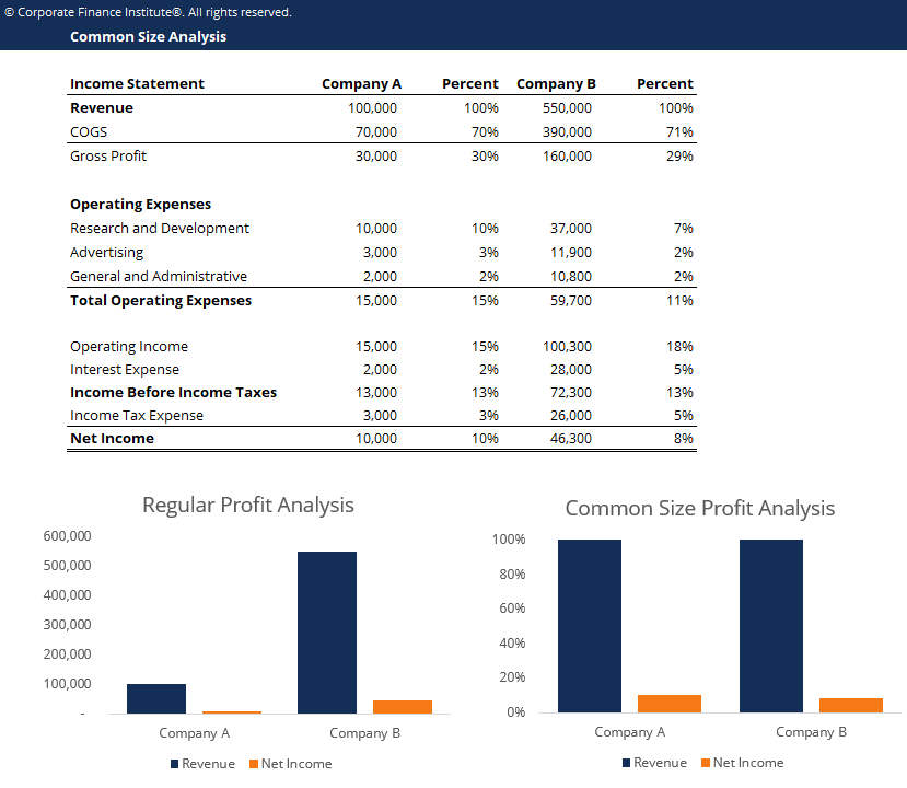 Common Size Analysis Template Screenshot
