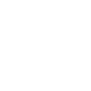 CFI - company seal on certificate