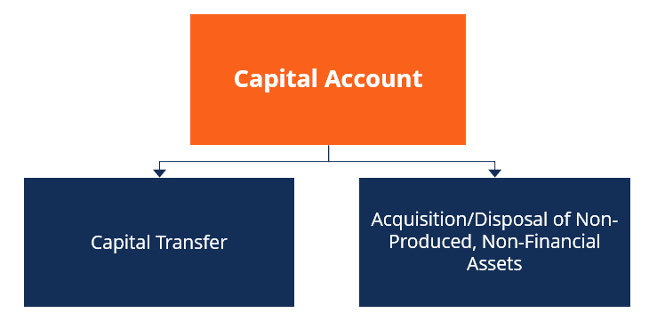 Capital Account Subaccounts