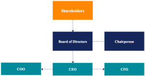 Org Chart for the CEO, Board, and Shareholders