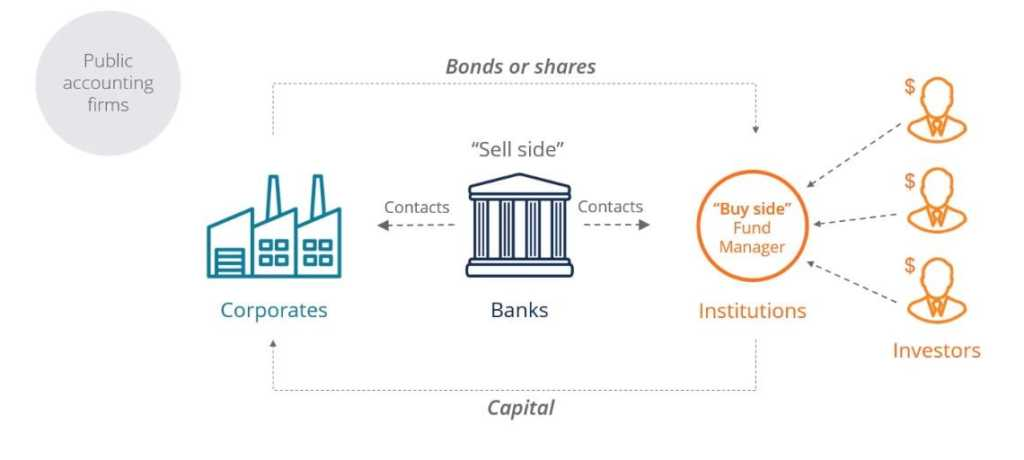 Key Players in the Capital Markets