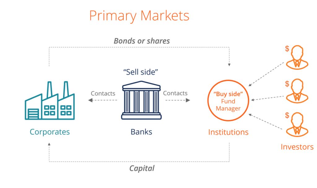 Diagram of the Primary Market