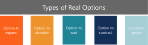 Real Options Types